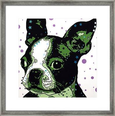 Boston Terrier Puppy Framed Print by Dean Russo