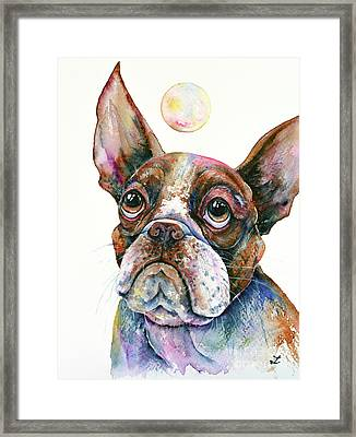 Framed Print featuring the painting Boston Terrier Watching A Soap Bubble by Zaira Dzhaubaeva