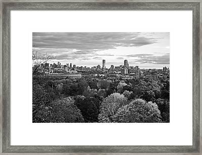 Boston Through The Autumn Trees Boston Ma Black And White Framed Print