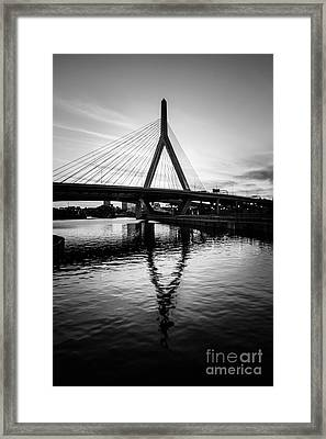 Boston Zakim Bunker Hill Bridge In Black And White Framed Print by Paul Velgos