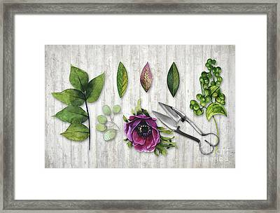 Botanica I Botanical Flower, Leaf And Berry Nature Study Framed Print