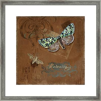 Botanica Vintage Butterflies N Moths Collage 1 Framed Print by Audrey Jeanne Roberts