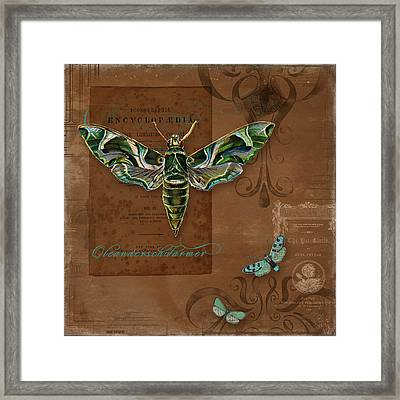 Botanica Vintage Butterflies N Moths Collage 2 Framed Print by Audrey Jeanne Roberts