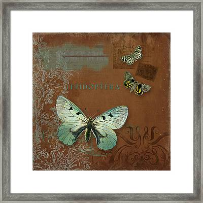 Botanica Vintage Butterflies N Moths Collage 4 Framed Print by Audrey Jeanne Roberts
