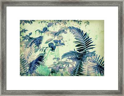 Framed Print featuring the mixed media Botanical Art - Fern by Bonnie Bruno