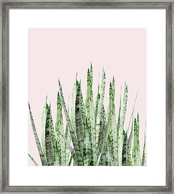 Botanical Balance Framed Print