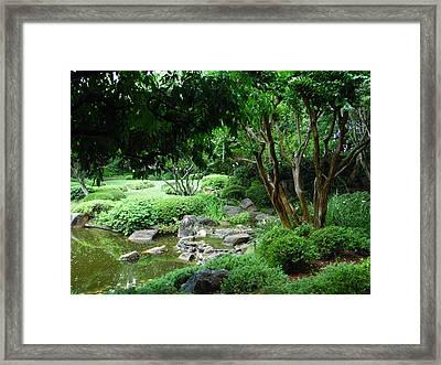 Botanical Gardens Framed Print