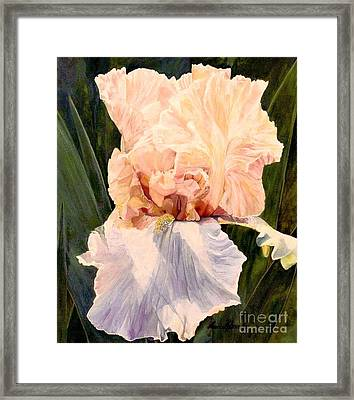 Botanical Peach Iris Framed Print