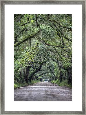 Botany Bay Country Road Framed Print by Dustin K Ryan