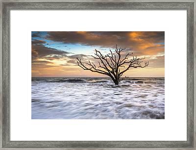 Botany Bay Edisto Island Sc Boneyard Beach Sunset Framed Print by Dave Allen
