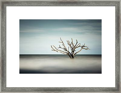 Botany Bay Framed Print by Ivo Kerssemakers