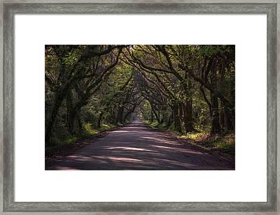 Botany Bay Road Framed Print by Rick Berk