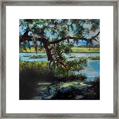 Botany Bay Summer Marsh Framed Print by Trish McKinney