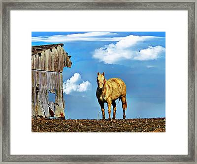 Both A Little Raggedy Framed Print by Julie Dant