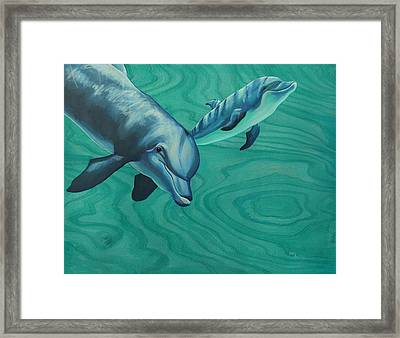 Bottlenose Dolphins Framed Print by Emily Brantley