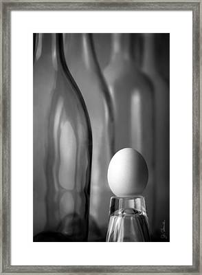 Framed Print featuring the photograph Bottles And Egg by Joe Bonita