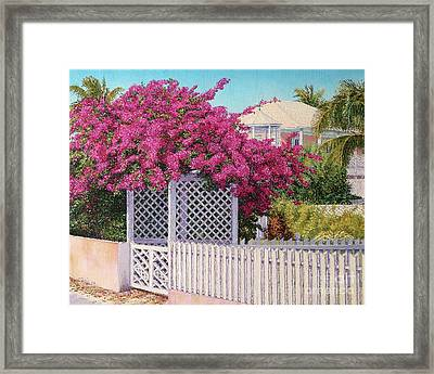 Bougainvillea Crown Framed Print