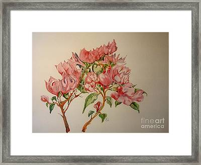 Framed Print featuring the painting Bougainvillea by Iya Carson