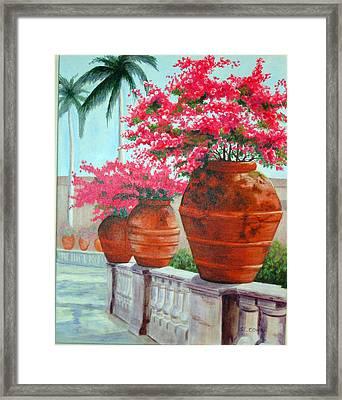 Bougainvillea Pots Framed Print by SueEllen Cowan