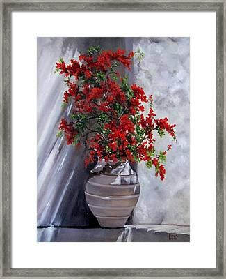 Bougainvillia Framed Print