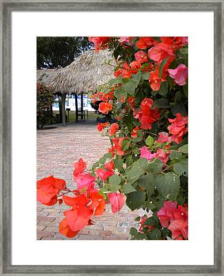 Framed Print featuring the painting Bouganvilla 2 by Renate Nadi Wesley
