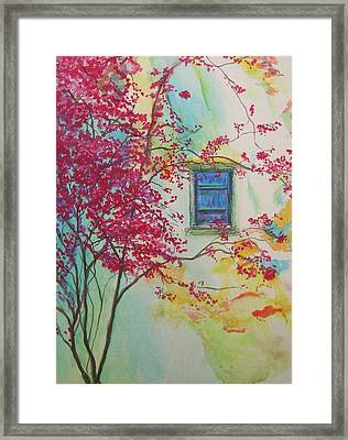 Bouganvilla And Blue Shutter Framed Print by Lizzy Forrester