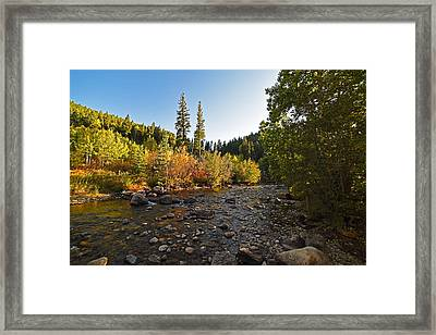 Boulder Colorado Canyon Creek Fall Foliage Framed Print