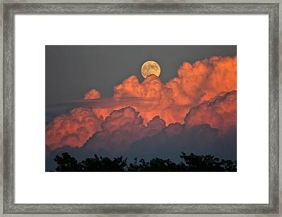 Bouncing On Dreams Framed Print