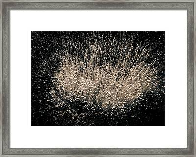 Boundless Joy Framed Print