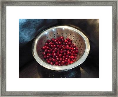 Bounty Of The Yard Framed Print by Jerry Browning