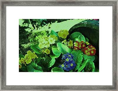Bouquet Framed Print by HweeYen Ong