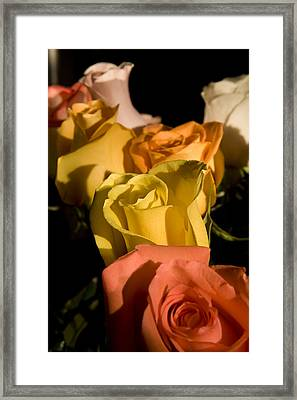 Bouquet In Line Framed Print