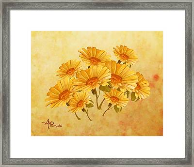 Bouquet Of Daisies Framed Print by Angeles M Pomata