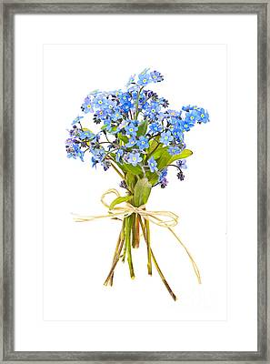 Bouquet Of Forget-me-nots Framed Print