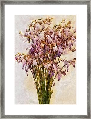Bouquet Of Hostas Framed Print