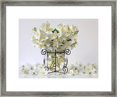 Bouquet Of White Jasmine Flowers In A Vase. Romantic Floral Still Life With Philadelphus Flowers. Framed Print by Ivora Obrazy