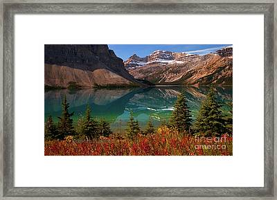 Bow Lake Alberta Canada Framed Print