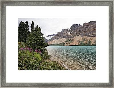Bow Lake Scenic With The Crawfoot Glacier Framed Print by George Oze