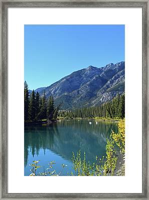 Bow River No. 2-1 Framed Print