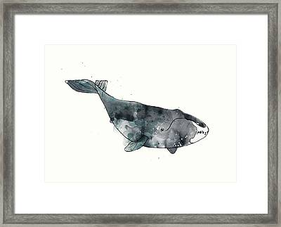 Bowhead Whale From Whales Chart Framed Print by Amy Hamilton