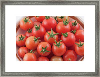 Framed Print featuring the photograph Bowl Of Cherry Tomatoes by James BO Insogna