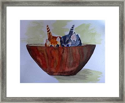 Bowl Of Kittens Framed Print by Irina Stroup