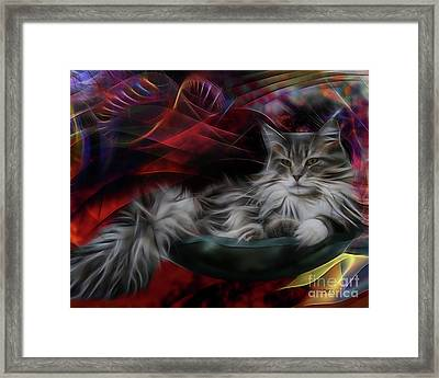 Bowl Of More Fur Framed Print