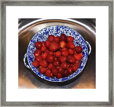 Bowl Of Strawberries 1 Framed Print by Douglas Barnett