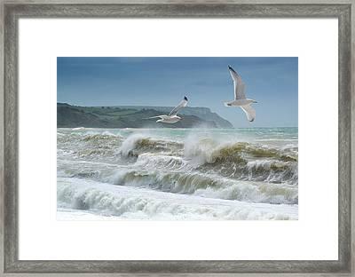 Bowleaze Cove Framed Print