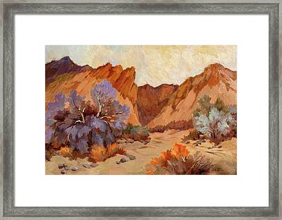 Box Canyon Framed Print by Diane McClary