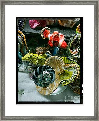 Box Fish And Clown Fish Checking Out New Coral Framed Print