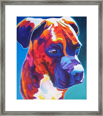 Boxer - Jax Framed Print
