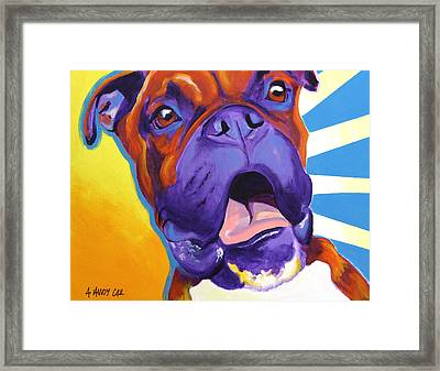 Boxer - Chance Framed Print by Alicia VanNoy Call