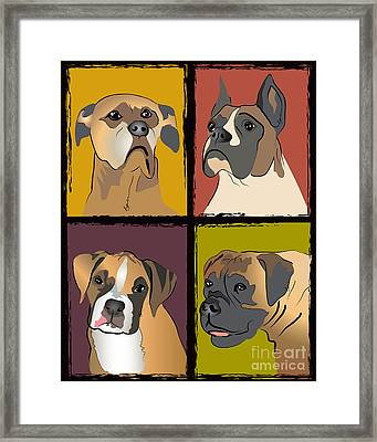 Boxer Dog Portraits Framed Print